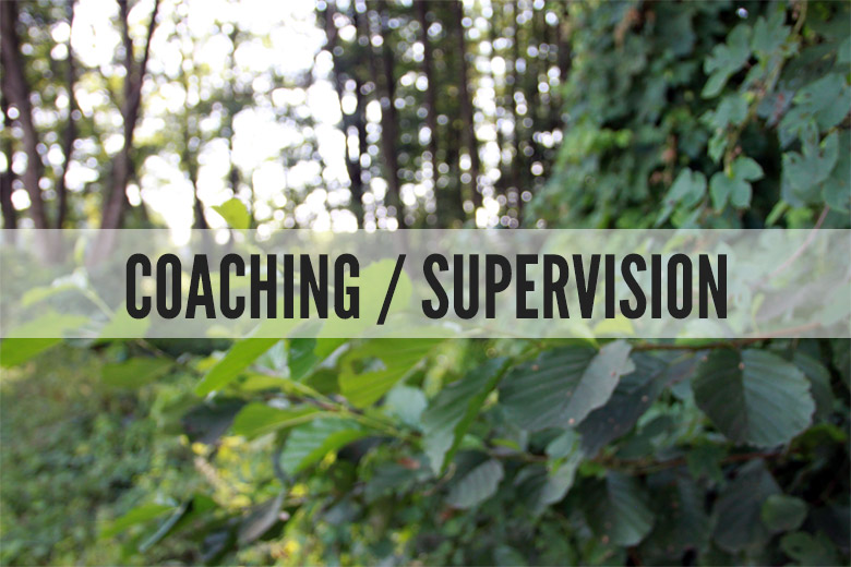 Coaching / Supervision